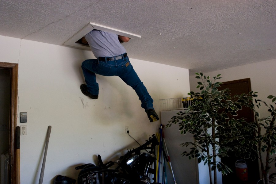Carl B Espinoza of Craig's Pesticide climbs into a crawl space above a garage to spray for ants that have been using the space to access the rest of the house. Espinoza says he goes out of his way to do a good job for customers, and even though the crawl space was not scheduled prior to his arrival, he improvised and got the job done.