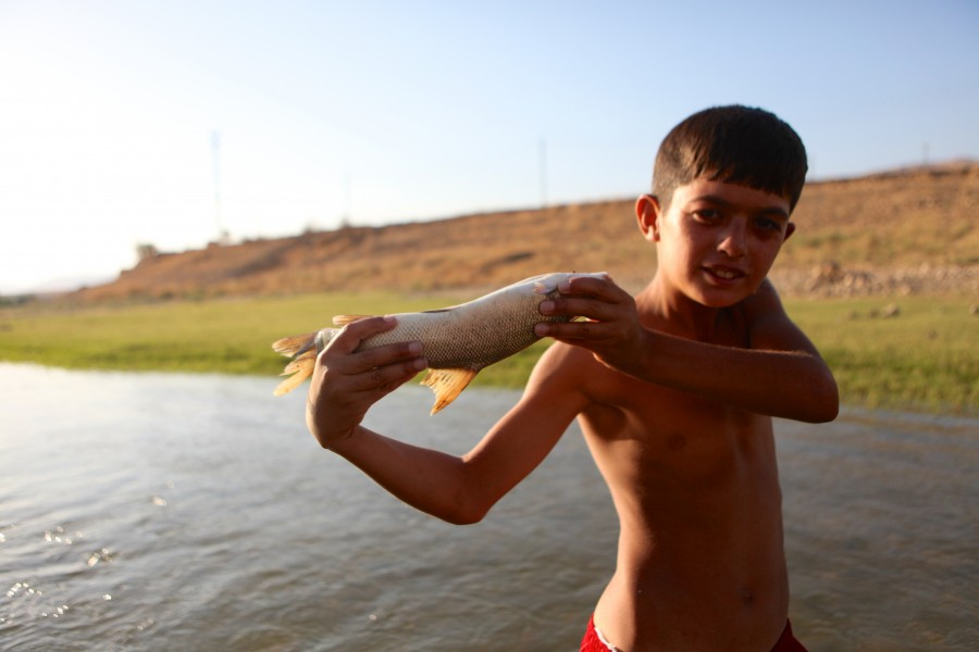 Boy holds a fish from Tigris River near Hasankeyf, Trukey.