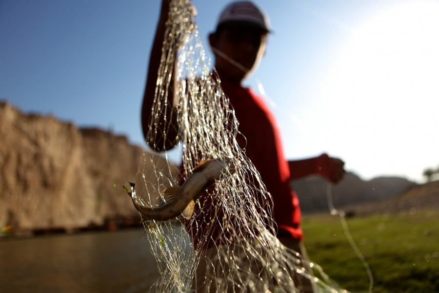 a boy holds up a small fish he caught using a gill net in the Tigris River near Hasankey Turkey